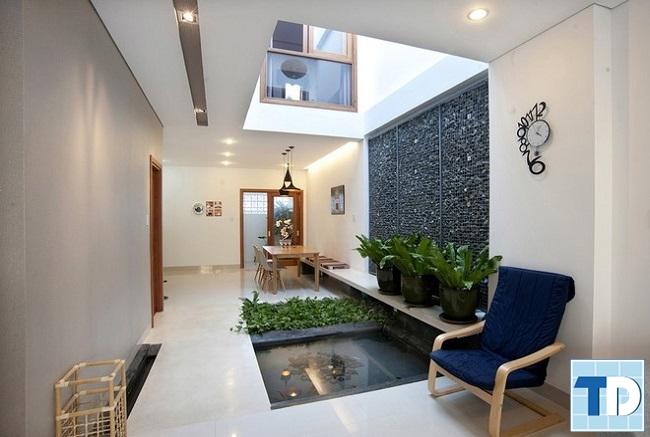 Đưa cây xanh vào trong nhà