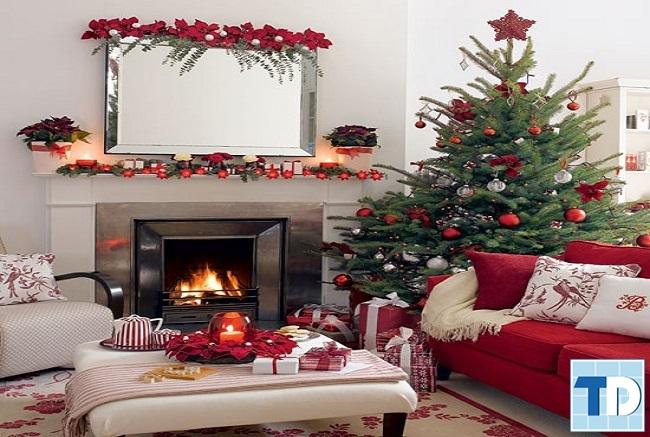 Cây thông mini tô điểm cho căn nhà của bạn thêm phần ấm áp